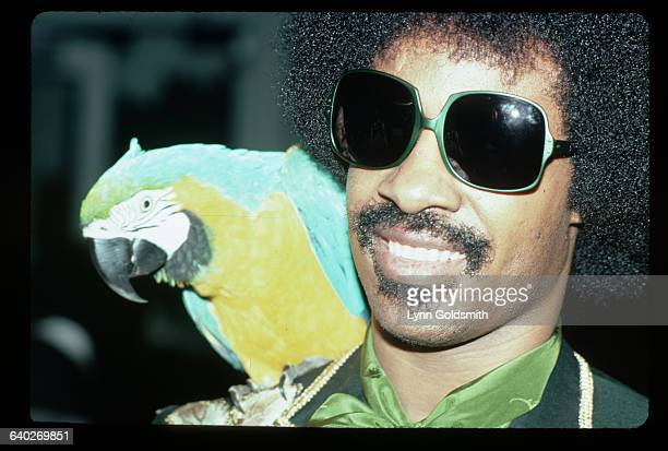 1979Soul artist Stevie Wonder is shown in a closeup photograph with a parrot seated on his shoulder