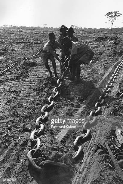One of the huge chains used for land clearing by groundnut workers in Tanganyika Original Publication Picture Post 4924 We Investigate The Groundnut...