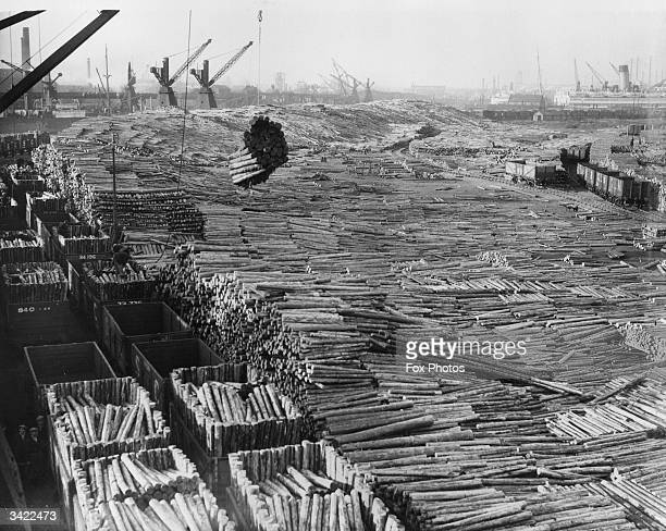 Unloading pit-props in Cardif Docks.