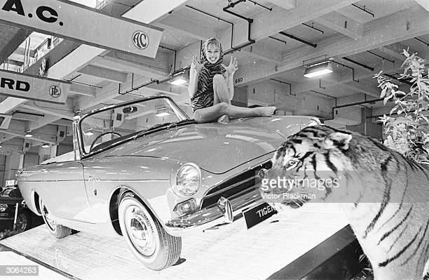 Model Joan Crane sitting on a Sunbeam Tiger at the 1965 motor show at Earl's Court