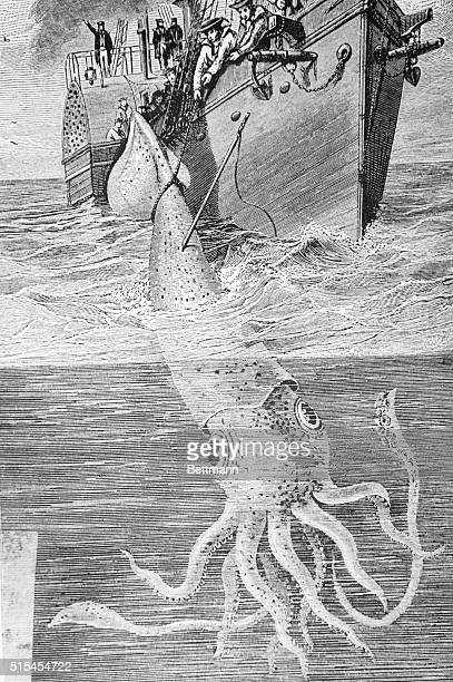A 19thcentury illustration showing the crew of the French warship Alecton attempting to catch a giant squid near Tenerife in 1861 The crew was only...