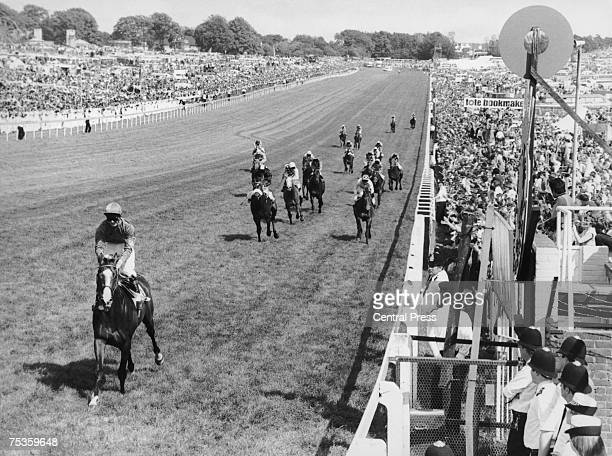 19yearold English jockey Walter Swinburn wins the Derby by 10 lengths on Shergar at Epsom 3rd June 1981
