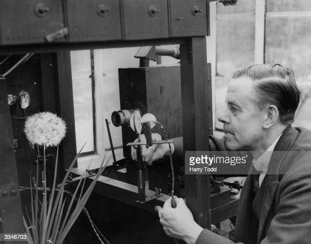 Percy Smith filming flowers at his home in Southgate London