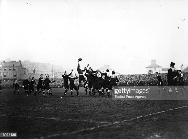 An international rurgby match between South Africa and Wales at Swansea which ended in a 110 victory for the Springboks