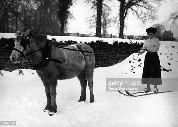 Woman skier about to be pulled along by a horse in Northampton.