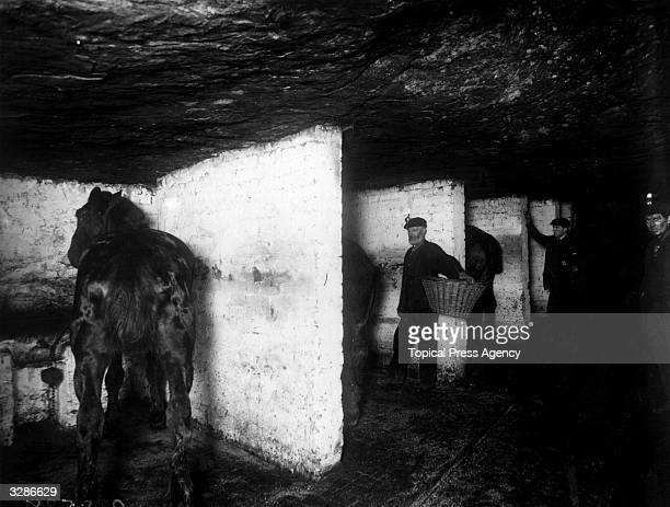The underground stables of the pit ponies at Bargoed Coal Mine near Cardiff