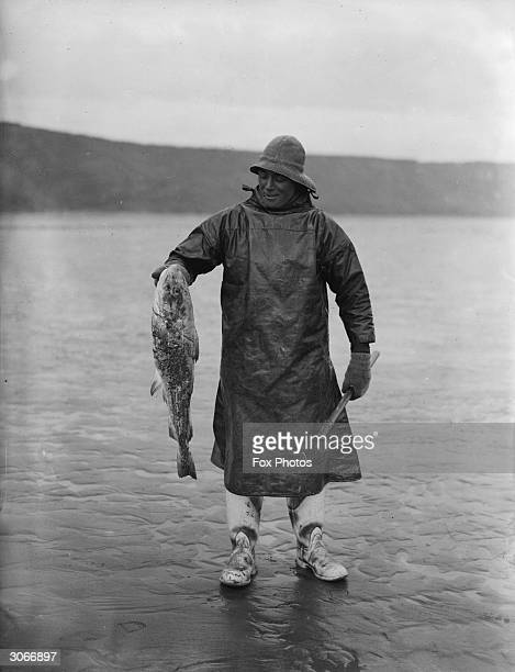 A fisherman from Filey in Yorkshire holds up the large codling he found inside the stomach of another catch a giant monkfish or angel shark