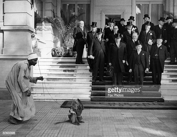 An Egyptian street entertainer tries to amuse a party of British delegates from Lancashire with his monkey as they leave an important cotton congress...