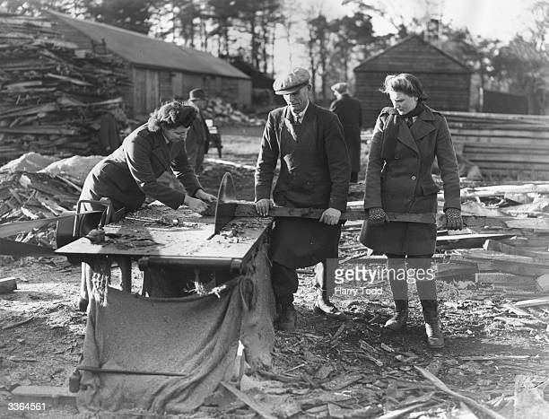 Members of the Women's Land Army sawing wood for kindling with a circular saw on Sandringham Estate in Norfolk