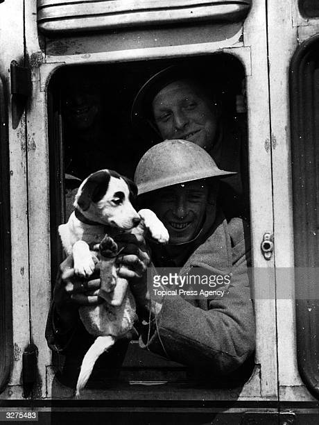 A member of the British Expeditionary Force with his mascot smiles from the train window having been safely evacuated back home from France