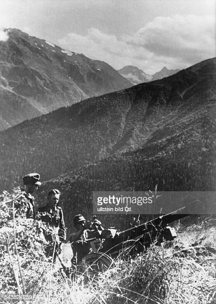 1st Mountain Division of the German Wehrmacht mountain infantry at Caucasus