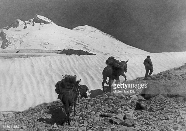 1st Mountain Division of the German Wehrmacht mountain infantry at Caucasus on the way to the Elbrus