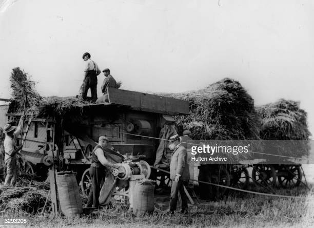 Workers operating a simultaneous grinding and threshing machine during the harvest at Dennis Bros Farm Kirton Lincolnshire