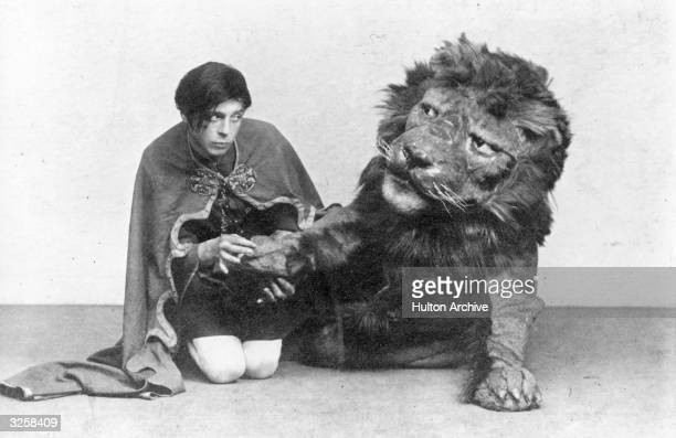 An actor playing the slave Androcles extracts a thorn from the lion's paw in a production of George Bernard Shaw's 'Androcles and the Lion' based on...