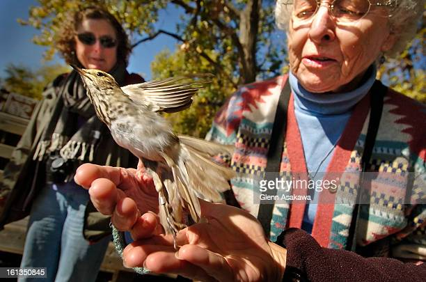 BRIGHTON COLORADO OCTOBER 13 2006Edie Thompson <cq> of Fort Collins left watches a thrush bird is released from her palm after being banded by...