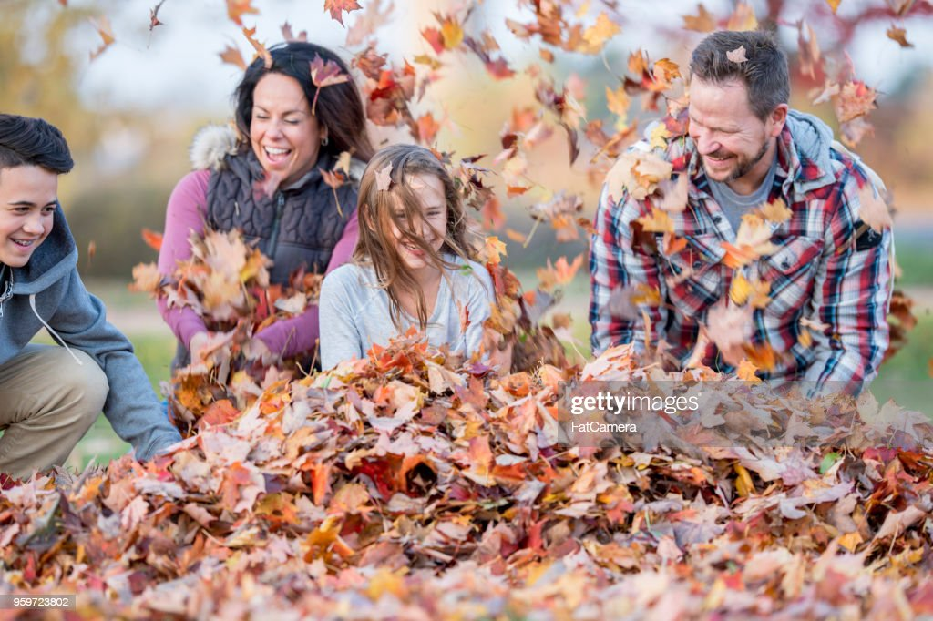 20180516_Family in Fall_03 : Stock-Foto