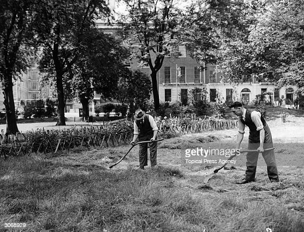 Men cutting the grass with scythes in Russell Square Garden London