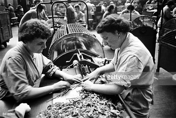 Workers shredding tobacco leaves in a Glasgow cigarette factory owned by Three Nuns tobacco The tobacco industry in Glasgow dates back to the...