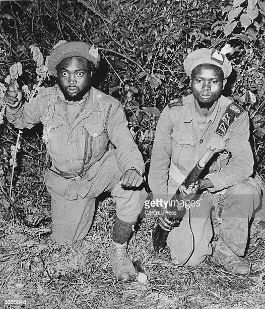 Two Mau Mau 'forest fighters' waiting in an ambush in the forest