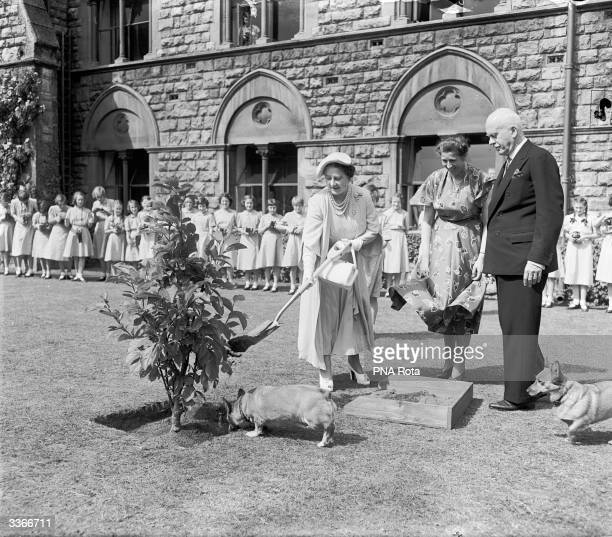 Queen Elizabeth The Queen Mother planting a commemorative tree in the grounds of Cheltenham Ladies' College Gloucestershire