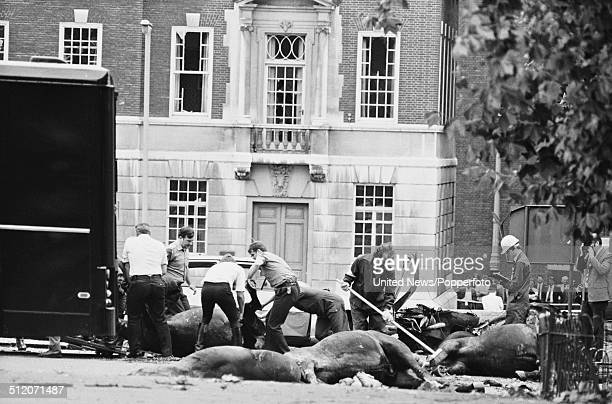 View of the aftermath of the Hyde Park bombing with dead horses from the Blues Royals cavalry regiment lying in South Carriage Drive following the...