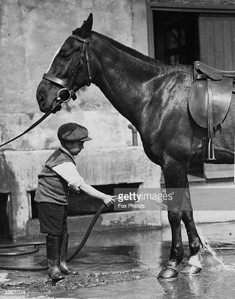 Young stable boy at the Roehampton club hoses down the horses legs.
