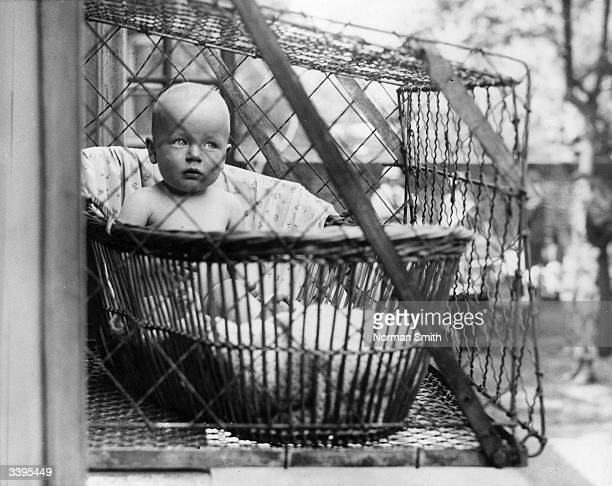 An example of a wire cage which a council in London propose to fix to the outside of their tenement windows so that babies can benefit from fresh air...