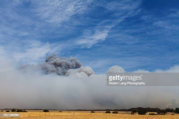 20th November 2012, Coomunga, Eyre Peninsula: Dwarfed by the giant plumes engulfing our neighbours property that the wild fires generated, this...