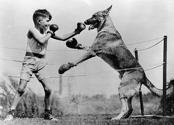 Boxing With Dog