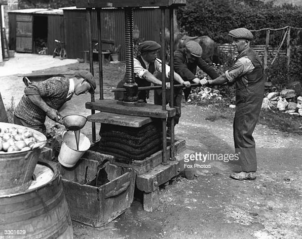 Workers in Happyland, near Ashton Keynes, Wiltshire using a primitive iron cider hand press with horsehair mats to filter the juice.