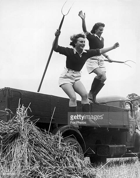 Landgirls Pauline Weston and Thelma Harper leap into action at harvest time on a Surrey farm