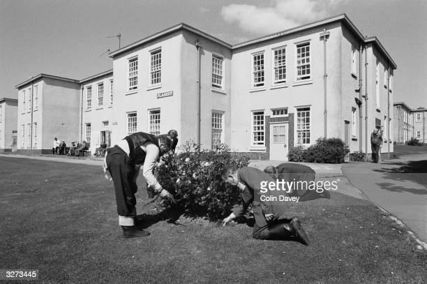 Gardening therapy for the high risk mental patients of Runwell hospital near Wickford Essex