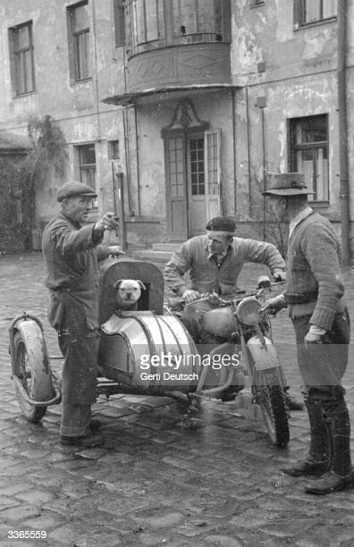 Motorcycle and sidecar belonging to the Vienna Society for the Protection of Animals collects a stray dog. Original Publication: Picture Post - 4508...