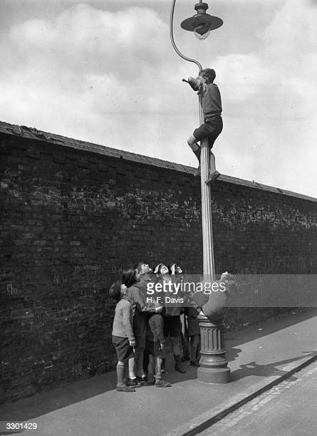 A boy watching a cricket match at the Oval London from the top of a lamppost while his friends wait below for a commentary
