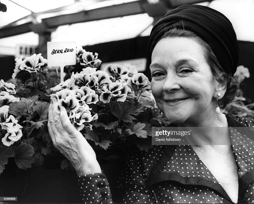 Actress Beryl Reid at the Chelsea Flower Show with 'Beryl Reid Polygonia', which a fan named after her.