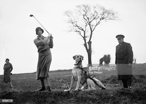 Vera White at Surbiton golf club with her dog 'Barney' who acts as her caddie.