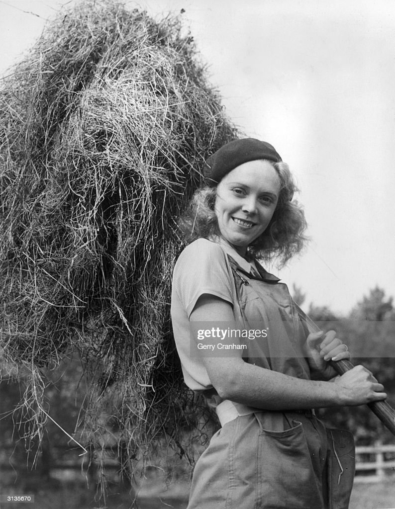 British actress Elsa Buchanan does her bit during World War II by forking hay at a farm in Surrey.