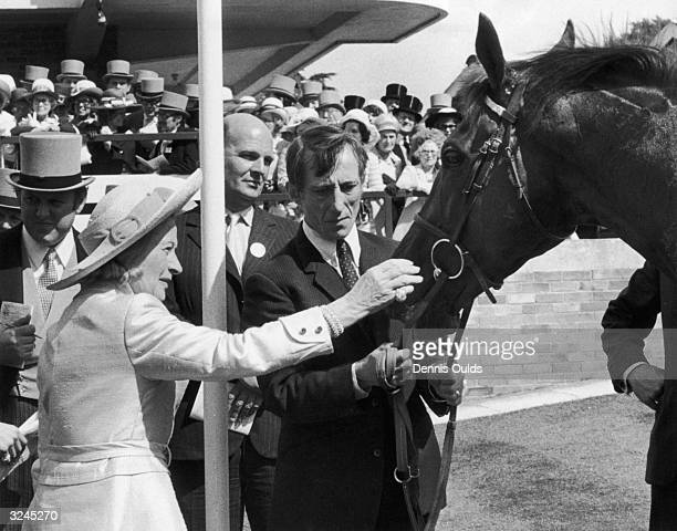 Mrs F R HueWilliams gives her husband's horse Rock Roi a pat after he finished first in the Ascot Gold Cup However the animal was disqualified for...