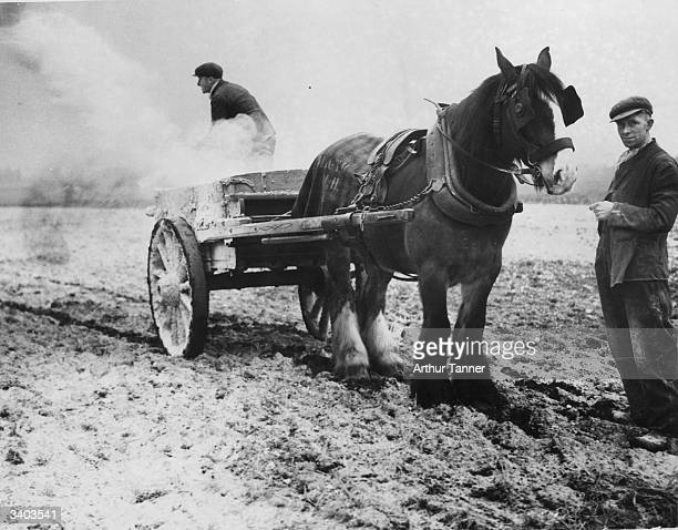 Farmers liming soil in preparation for their crops in Bolton Lancashire