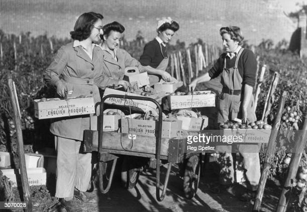 Members of the Women's Land Army training at East Melling near Maidstone in Kent