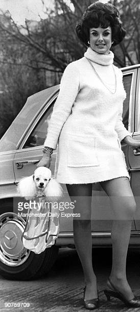 �22yearold Cynthia Thompson of Bolton with Andy the miniature poodle Andy is modelling a car travel coat His owner Winifred Irving of Altrincham in...