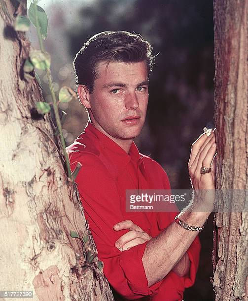 Actor Robert Wagner stands posed smoking beside tree closeup