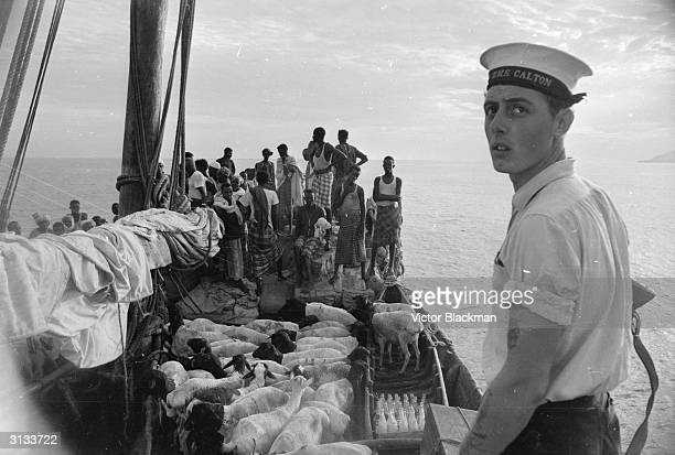 The Royal Navy minesweeper HMS Calton patrols the seas around Aden searching for dhows running guns to the terrorists during the country's war for...