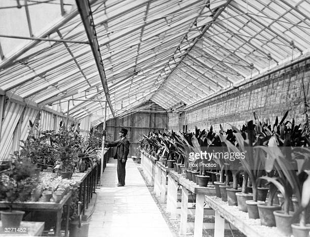 Mr Harding the head gardener of Wythenshawe Park checks the temperature of one of the new glass houses recently built in the Park The long glass...