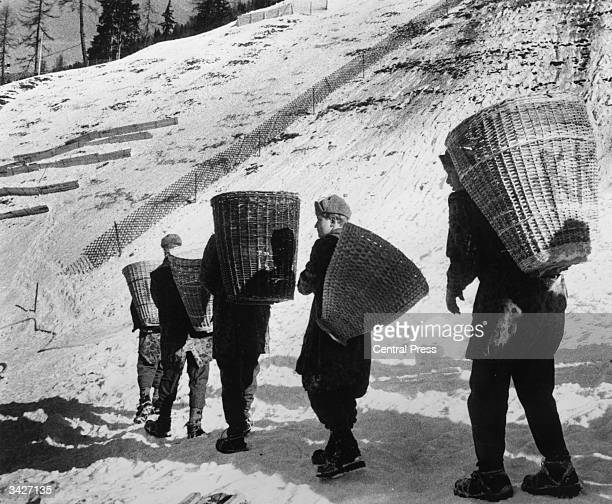 Austrian soldiers carrying baskets of snow to the ski slopes in preparation for the Winter Olympics at Innsbruck where there is a shortage of snow...