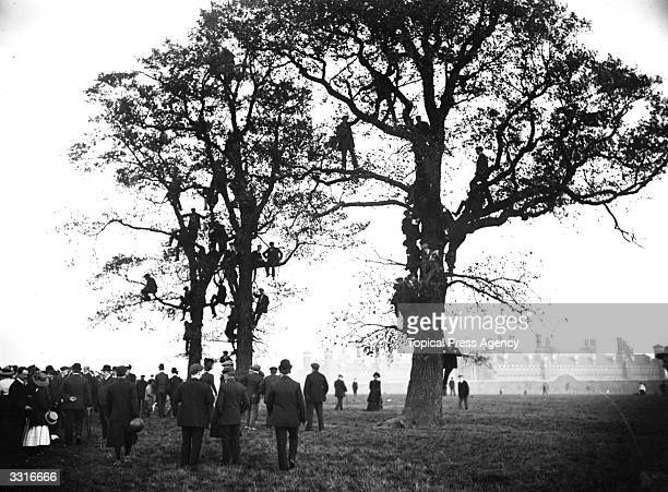 Spectators of the Marathon at the 1908 London Olympics climb trees in Wormwood Scrubs for a better vantage point
