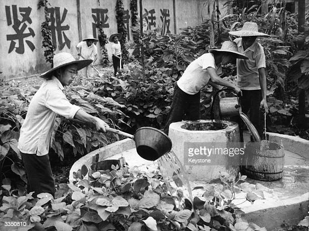 Water is drawn from the well to water plants in the grounds of a Shanghai detention centre for young Chinese delinquents The boys are made to study...