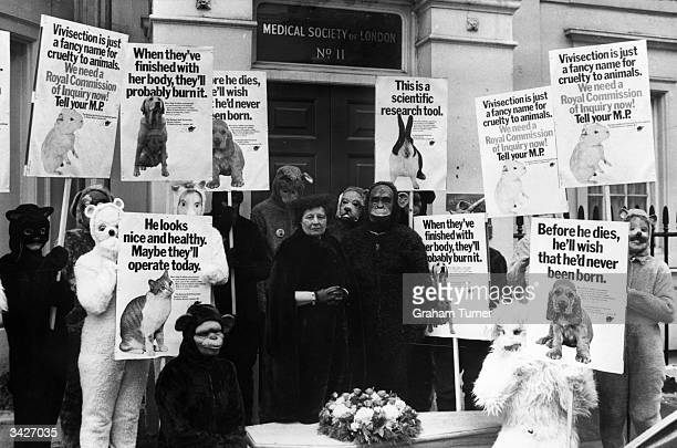Lady Dowding President of the NAVS stands before a coffin after a mock funeral outside the Research Defence Society office in London With her are...