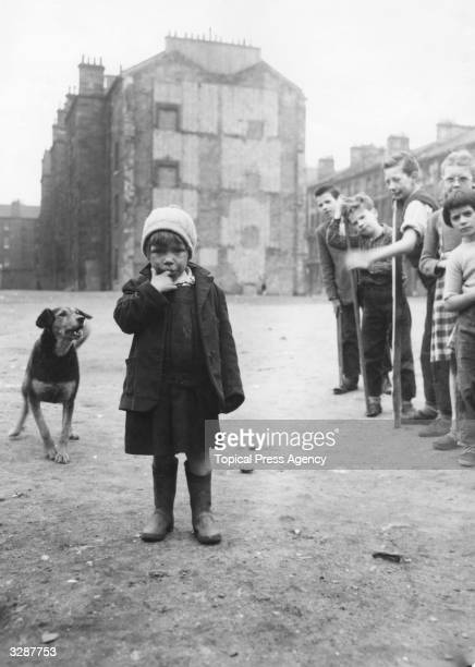 A dog barks at a girl in the Surrey Lane area of the Gorbals Glasgow The Gorbals tenements were built quickly and cheaply in the 1840s providing...