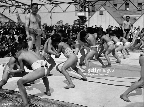 Boys wearing traditional loincloth and waistband practise a sumo hold in Japan